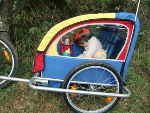 Велоприцеп детский
